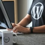 24 Freelancer WordPress Themes to Make Your Website Stand Out