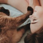 How I Went From Cat Sitter to Freelance Content Strategist in 23 days